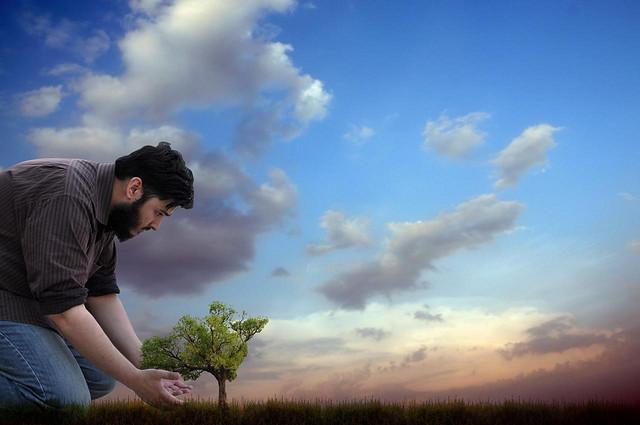 Islam et protection de l'environnement