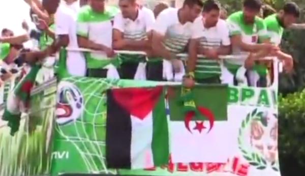 le drapeau de la Palestine
