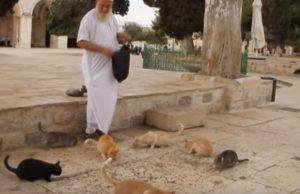 Ghassan Abou Ayman chats al aqsa