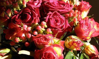 étudiants musulmans offrent des fleurs