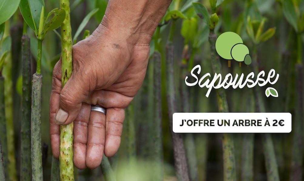 """Résultat de recherche d'images pour """"sapousse life"""""""